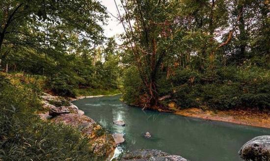 NatureWalk-creek1
